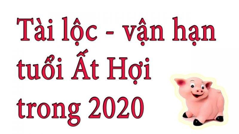 Vận Hạn Năm 2020 Của Ất Hợi 1995Vận Hạn Năm 2020 Của Ất Hợi 1995