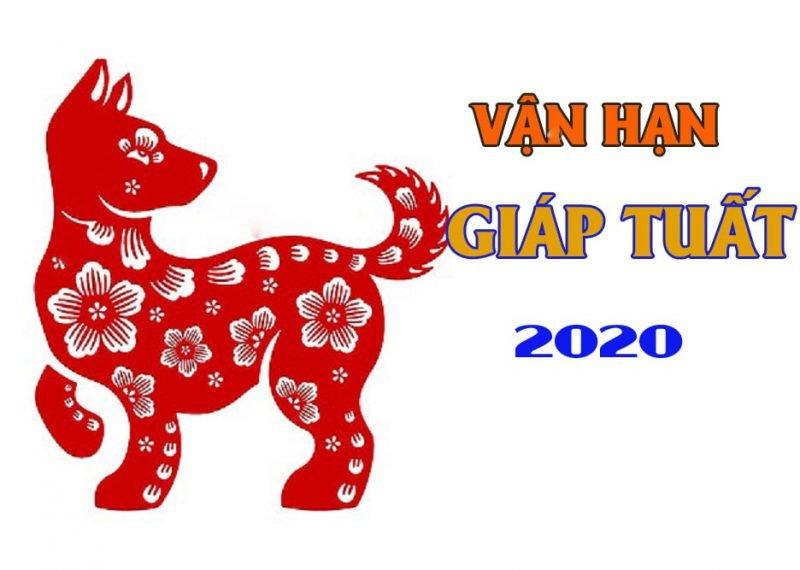 Vận Hạn Năm 2020 Của Giáp Tuất 1994
