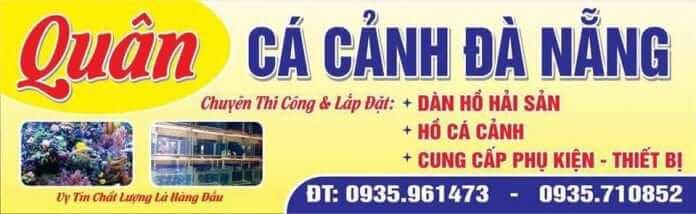 shop cá cảnh Đà Nẵng