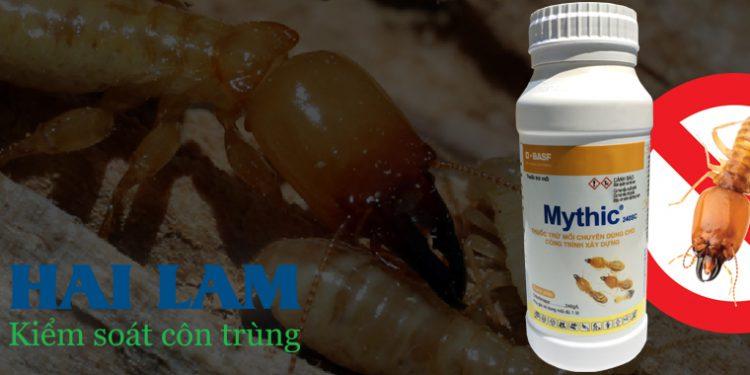 Công ty chống mối khử trùng Hải Lâm